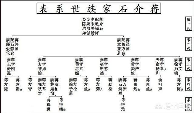 蒋友柏和蒋万安是什么关系<strong></p> <p>杨宜勇民族复兴</strong>?