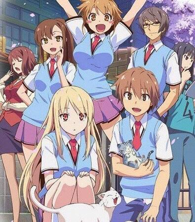 有哪些你们觉得好看的日本后宫动漫推荐?